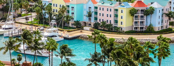 bahamas resort _Harvard Vacations