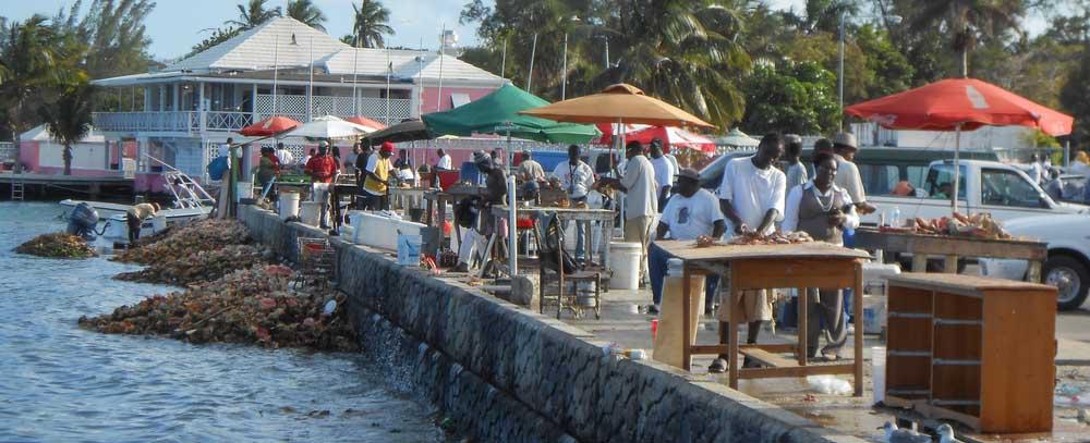 freeport bahamas excursions